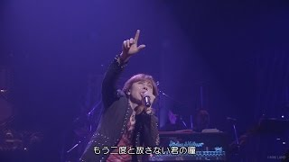 山根康広★Get Along Together【 LIVE
