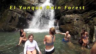 El Yunque Trip Puerto Rico
