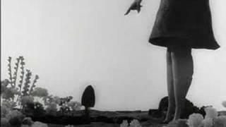 Tim Burton's Vincent featuring Edgar Allan Poe's The Raven