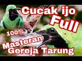 Cucak ijo tengkek buto - kreo mp3 download