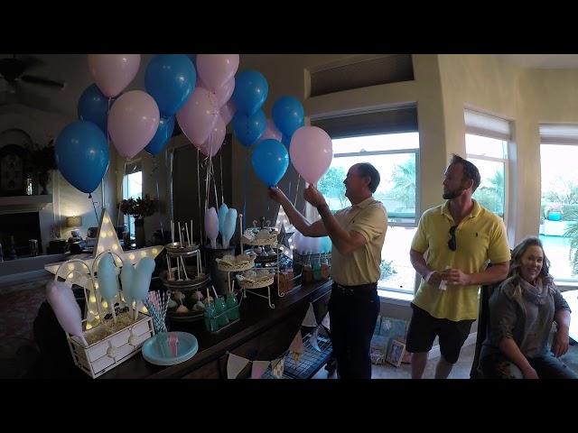 Surprise Twin Baby Gender Reveal!