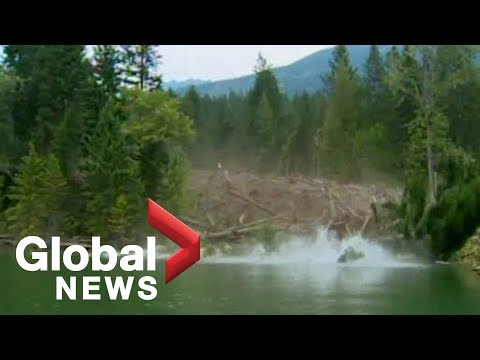 EPIC mudslide caught on camera Raw Video