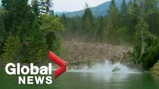 EPIC mudslide caught on camera [Raw Video]
