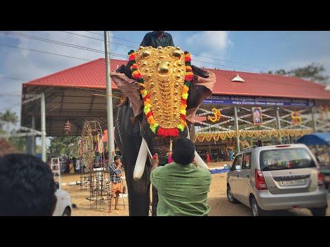 Xxx Mp4 Thrikkadavoor Sivaraju New Season Started പടിഞ്ഞാറെ കൊട്ടാരം ശ്രീധർമ്മശാസ്താക്ഷേത്രം Cherthala 2018 3gp Sex