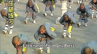 Shaolin kung fu basic training 2