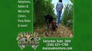 UAC Dog Show TV Spot