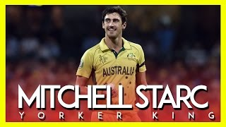 || Mitchell Starc - The Yorker King ||
