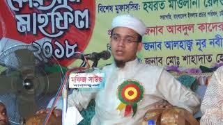 2018  সালের সেরা ওয়াজ   Exclusive Bangla Waz Mufti Sayed Ahmad Kalarab | মুফতি মাওলানা সাঈদ আহমাদ
