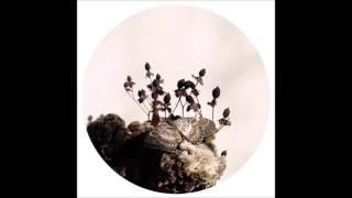 Ben Buitendijk - Transcended Being [OBQ004]