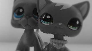 LPS ~ Sad Song - MV