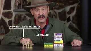 The Truth About 6.5mm Rifle Cartridges