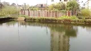 Star Bangla Channel