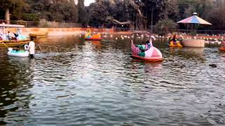 Video Captured with My Infinix Hot Note X551 Mobile at Karachi Zoo
