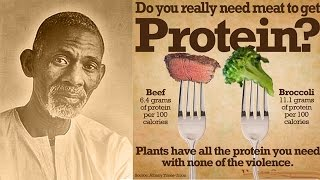 Dr. Sebi - The Protein Food Myth (Clip)