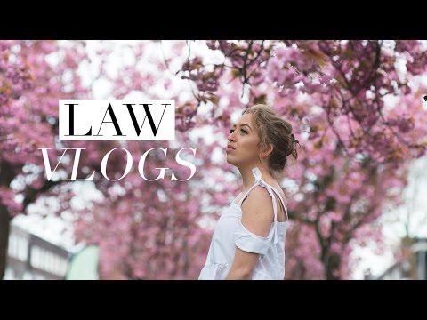 Xxx Mp4 DEAR DIARY WHY Law School Vlog 31 3gp Sex