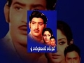 Sri Rajeswari Vilas Coffee Club Full Length Movies || Krishna, Jayapradha