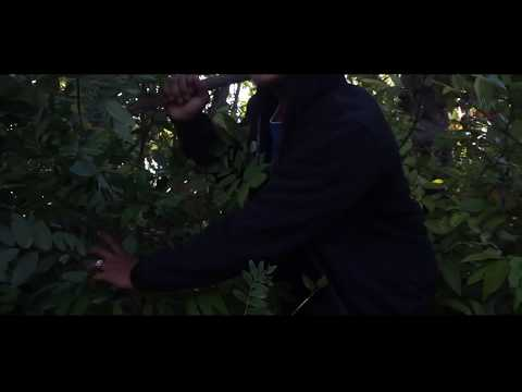Brother help two sisters in the forest from the villain man