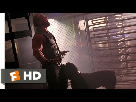 Barb Wire 5 10 Movie CLIP Package Check 1996 HD