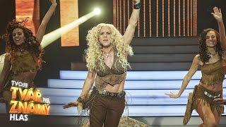 Roman Vojtek jako Shakira  -