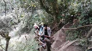Safari msituni (bongo movie)