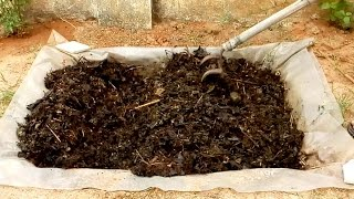 How to make Compost using leaves and wasted vegetables at home
