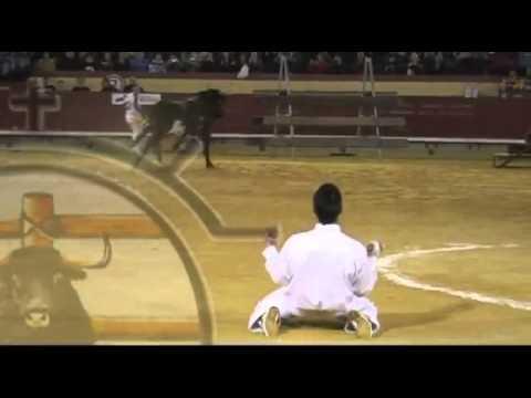 Primer salto al Toro Raton Videos de Toros Bravos