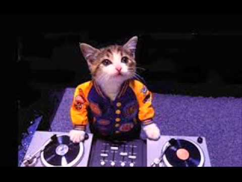 Xxx Mp4 RembuLan DJ XXx 3gp Sex