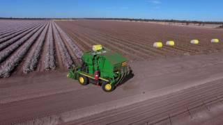 Australian Cotton Harvest 2016
