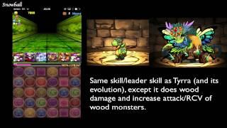 PaD Beginner Tutorial 01: Which starter dragon should I choose?