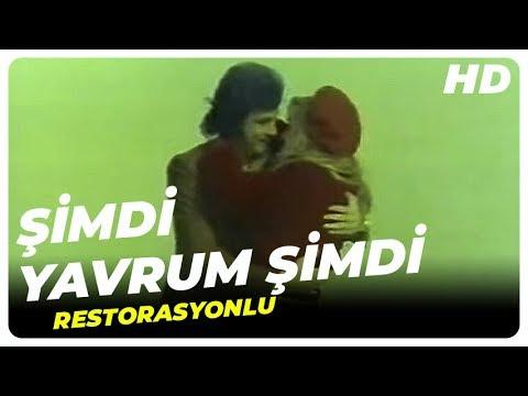 Şimdi Yavrum Şimdi Türk Filmi