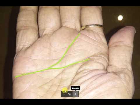 Guru valya and Shuker valya in one hand