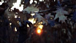 Sebastian Paul & Onisu - Only She Can Make The Sun Rise