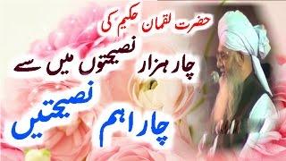 Chaar Aham Nasihtain Peer Zulfiqar Ahmad Naqshbandi