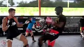 Tiger Muay Thai Sparring