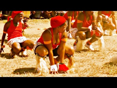 INDLAMU Kwazulu Natal Best Zulu Dance Must Watch