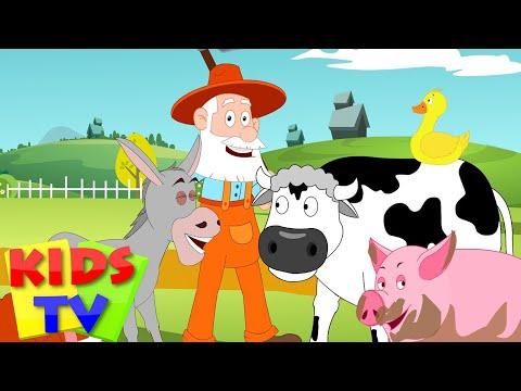 Xxx Mp4 Old McDonald Had A Farm Kids Tv Nursery Rhymes Animal Sound Song 3gp Sex