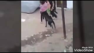 Funny video chulbule kalakar romantic kalakar how do you video Jadu Yog