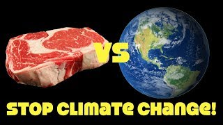 Climate Catastrophe By 2030! Why Won