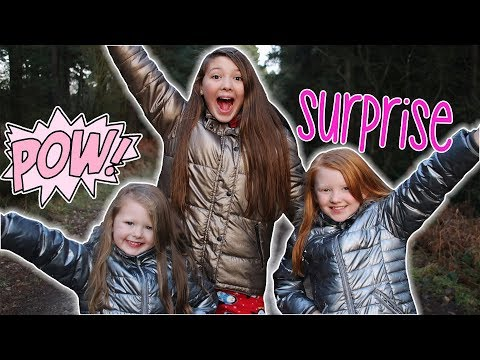 CHRISTMAS HOLIDAY TRIP - SURPRISE REVEAL! VLOGMAS DAY 23!