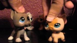 Lps- Stuff to say to your enemy