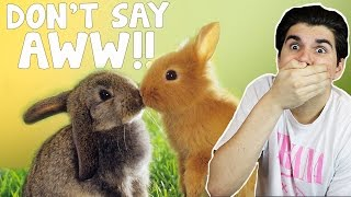 TRY NOT TO SAY AWW CHALLENGE!!