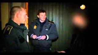 Politistationen - Ræv i en havestol
