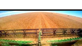 Glenvar Wheat Harvest 2015