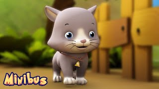 🐱 Ding Dong Bell 🐱 Nursery Rhyme | Animal Songs for Children & Toddlers