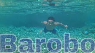 Bogac Spring Barobo