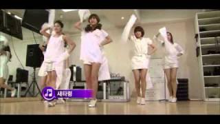T-ara - Lies Song Scoop