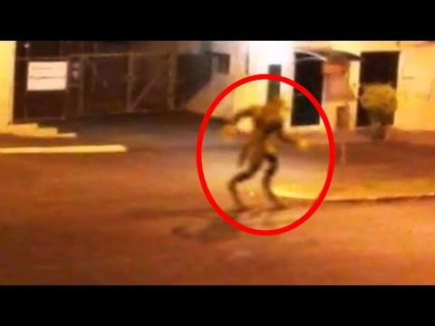 5 Mythical Creatures Caught On Camera & Spotted In Real Life