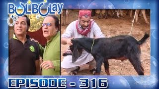 Bulbulay Ep 316 - ARY Digital Drama