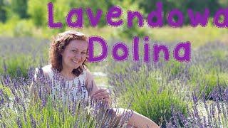 POLSKA LAVENDOWA DOLINA (A VISIT TO THE LAVENDER VALLEY)