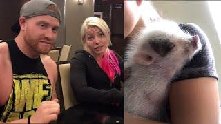 Pet pig!! Alexa Bliss and her fiancé, Buddy Murphy, talk about their pet pig